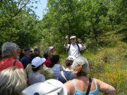 Ξενάγηση από τον Δρ Νίκο Κρίγκα στον Βαλκανικό Βοτανικό Κήπο των Κρουσσίων
