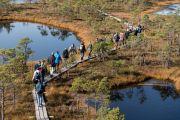 Διάδρομος σε υγρό λιβάδι στο Εθνικό Πάρκο Ķemeri