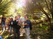 Επίσκεψη στον Βοτανικό Κήπο της; Φιλοδασικής. Ο καθ. Π.Δημόπουλος (αριστερά) συνομιλεί με τον Καθ.Γ.Κοράκη (δεξιά). Πίσω διακρίνονται οι N.Turland και T.Borsch και η Κα Ε.Δασκαλάκου